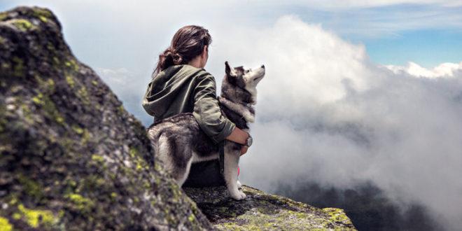 Adventure & Optimism